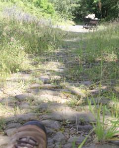 Zuerst Römerwege, dann Lorengleise: Um die Basaltlava abzubauen, wurde viel Infrastruktur geschaffen. Foto: Dorothea Müth