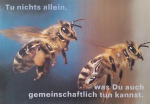 Ermunterung zur Verantwortungsteilung. Entdeckt im Gemeinschaftskeimling Leipzig, einer Praxisforschung zu Arbeit, Leben und Transformation. Foto: Dorothea Müth